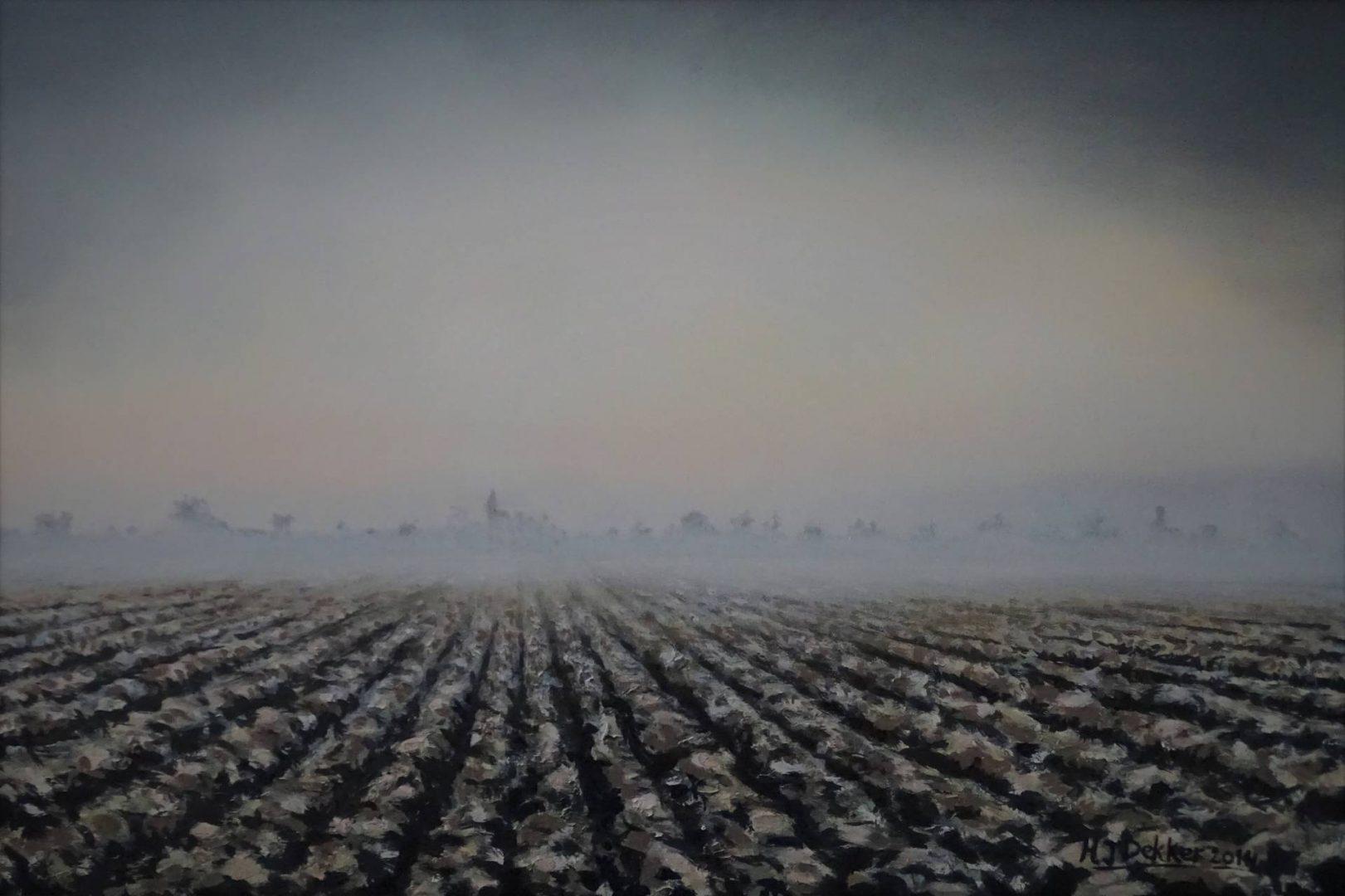 Plowed field 3